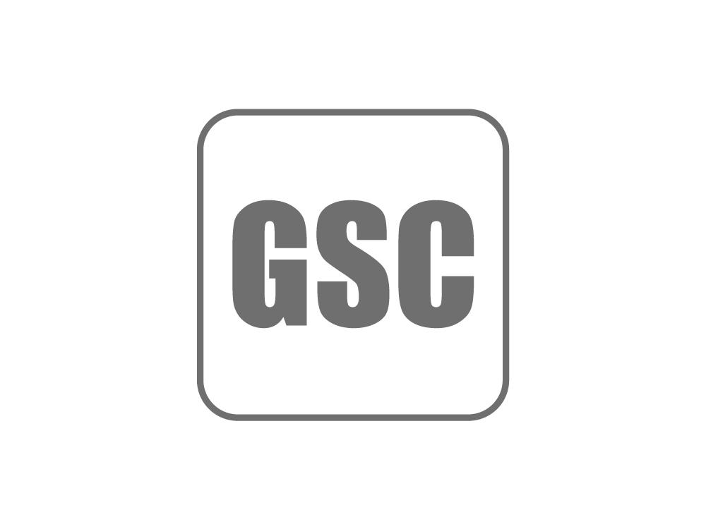 Geometrical Stability Control (GSC)